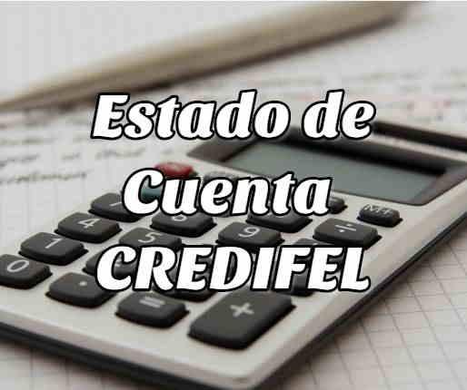 ¿Cómo Checar mi Estado de Cuenta de CREDIFIEL?
