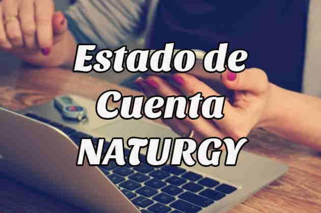 ¿Cómo checar mi Estado de Cuenta Naturgy?