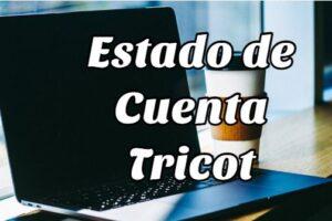 Paso a paso para consultar el Estado de Cuenta Tricot en internet