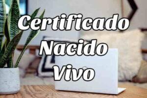 Cómo solicitar un Certificado de Nacido Vivo en Ecuador