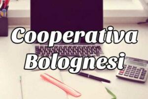 ¿Cómo checar mi Estado de Cuenta Cooperativa Bolognesi?