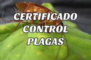 ¿Cómo solicitar un Certificado de Control de Plagas?