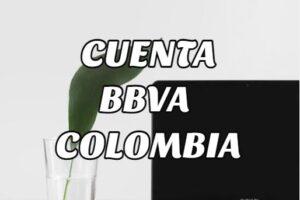 Pasos para conocer Número de mi Cuenta BBVA Colombia